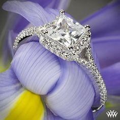 18k White Gold Ritani Bella Vita Split Halo Diamond Engagement Ring for Princess from the Ritani Bella Vita Collection. Love this ring