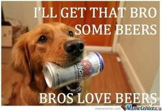 Bros love beers.