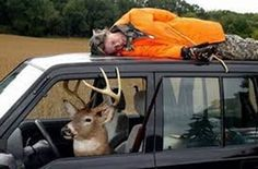 Five Deer Hunting Tips For Beginners