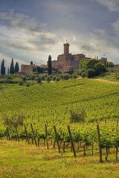 Castello di Poggio alle Mura (Castello Banfi) - Montalcino (Siena), Tuscany, Italy