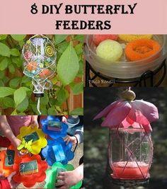 8 DIY Butterfly Feeder