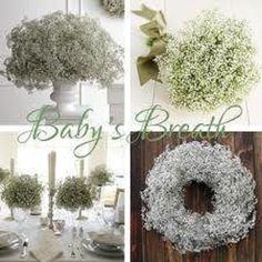 table decorations, babies breath, centerpiec, barn doors, wedding planning, flowering plants, bouquet wedding, winter weddings, babi breath