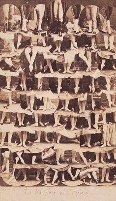 Legs of dancers of the Paris Opera