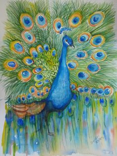 Peacock by+SharonFosterArt