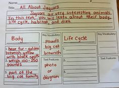 Nonfiction Research - Great second grade blog