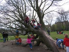 EVERY school/public playground needs THIS kind of climbing equipment...imagine the 'adventures' the children could go on!
