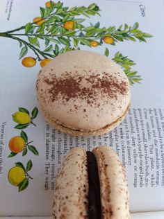 Chocolate Orange Macarons Macaroons Recipe