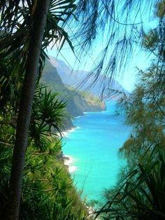 Prochaine destination  : Hawaii !