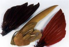 More things you can do with feathers to turn them into great hat ornaments