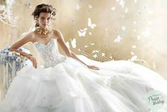 Eve of Milady 2014 Dreamy gown