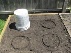 Three Sisters | Plant  corn in a circle for better pollination. Eight seeds around each circle. Use 5 gal. bucket to mark. In dryer climates make a well in the middle to catch the water. plant, circles, sister garden, buckets, three sisters gardening, sweet domest, garden idea, backyard, classroom garden