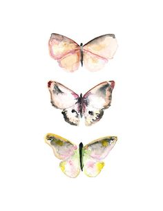 Butterfly Print - Nature Art - Watercolor Butterflies - Archival Print - Pink - Home Decor on Etsy, $24.00