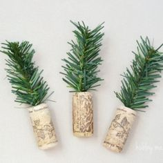 Make these cute mini cork trees with supplies you may already have on hand. Super fast and easy!