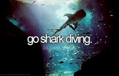 Dive with sharks. worst fear.