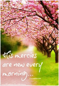 Lamentations 3:22-23 It is of the Lord's mercies that we are not consumed, because his compassions fail not. They are new every morning: great is thy faithfulness. (KJV)