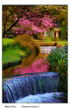 Backyard Waterfall..oh yes
