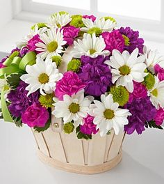 """This white-wash handled basket is filled with green button pompons, white daisy pompons, hot pink mini carnations and purple carnations.  $60 bouquet includes 9 stems.  Approximately 9""""H x 12""""W.  $70 bouquet includes 15 stems (shown)   Approximately 11""""H x 12""""W  $85 bouquet includes 20 stems.  Approximately 12""""H x 13""""W."""