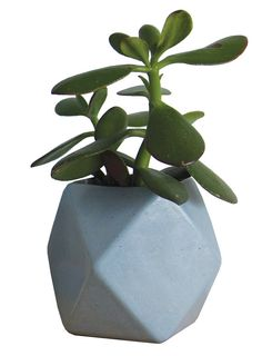 CERAMIC PLANTER Gem Vessel Speckled bluey grey
