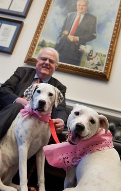 Rep. Jim Sensenbrenner, R-Wis., is pictured with his adopted dogs Monique, left, and Tinker, in his Rayburn office. (Photo By Tom Williams/Roll Call)