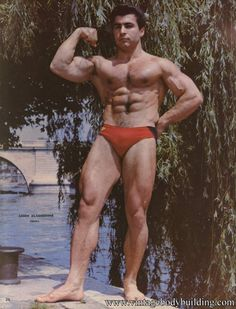 assem alameddin, muscl men, bodybuild assem, vintag muscl
