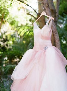 Blush Pink Vera Wang Gown | photography by valentinaglidden.com