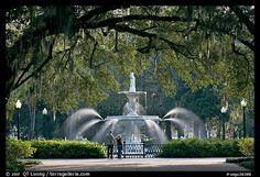 squar, forsyth park, savannahgeorgia, fountain, black white, travel, place, savannah georgia, tybee island