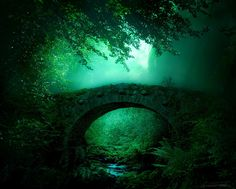 emerald bridge in the forest