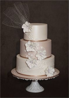 Latte and ivory wedding cake with french netting and sugar flowers.   Lovely!