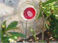 Ruby Daffodil Bloomstake