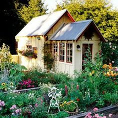 Ideas for our backyard shed :)