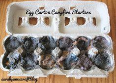 Sarah Jane's Craft Blog: Egg Carton Campfire Starters