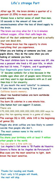 funny verticals - life facts