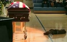 This was a picture taken at the funeral of one of the Navy SEALs recently killed in action in Afghanistan. His friends drove his dog, Hawkeye, from Iowa, and the dog laid next to his coffin the whole time.