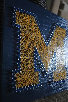 University of Michigan DIY project