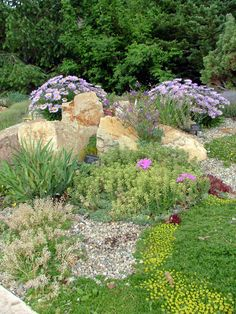 Google Image Result for http://upload.wikimedia.org/wikipedia/commons/a/a2/BF_alpine_gardens_1.JPG