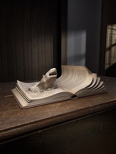 shark book sculpture