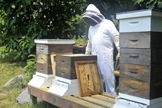 """One of the things my dad does to help his hives along is to make them H-B-H, which stands for """"Honey Bee Healthy."""" He makes his own, but you can buy it too. It includes sugar, water, lecithin granules, spearmint water, and lemongrass oil. He feeds this to them once the honey flow has stopped."""