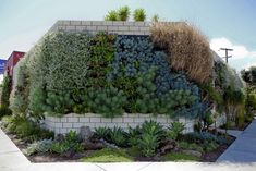 living walls, pocket, edible garden, vertic garden, green wall, garden walls, outdoor kitchens, wall gardens, wall planters