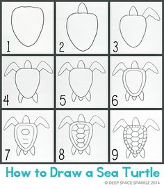 How-to-draw-a-sea-turtle-blog