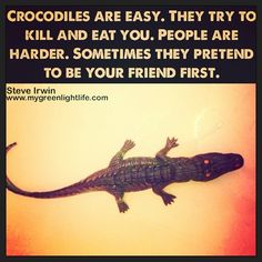 Crocodiles are easy. They try to kill and eat you. People are harder. Sometimes they pretend to be your friend first. Steve Irwin #quotes #friends SteveIrwin
