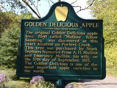 Golden Delicious Apple Sign