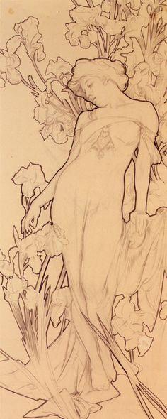 Alphonse Mucha - Iris tattoo ideas, sketch, alphons mucha, backgrounds, inspir, irises, artist, art nouveau, alphonse mucha