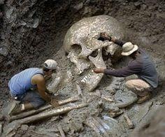Nephilim skull, histori, ancient, nephilim, mysteri, interest, skeletons, weird, giant skeleton