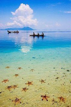 Amazing- Indonesia -Semporna - Sabah in Borneo -  Indonesia
