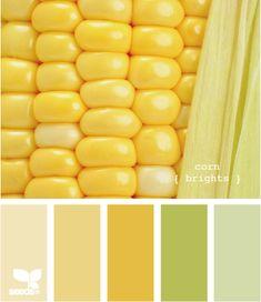 corn brights