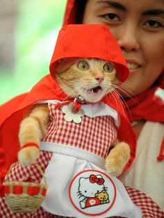 Halloween Costumes for Pets >> http://www.diynetwork.com/decorating/halloween-costumes-for-pets/pictures/index.html?soc=pinterest