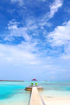 take me to the maldives