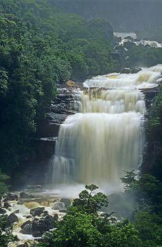 The Base of Angel Falls - Canaima National Park, Venezuela