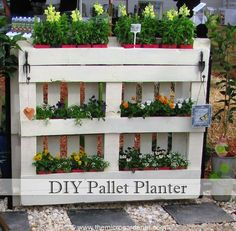 This is the original underside of the pallet but I've used this side to create 6 mini planter boxes with 4 x 100mm (3in) pots.