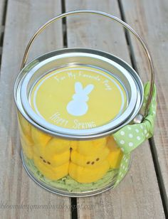 easter idea, teacher gifts, buckets, edible crafts, craft stores